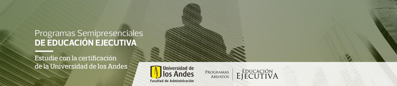 Programa en Dirección de Proyectos - Semipresencial de Educación Ejecutiva - Facultad de Administración, Universidad de los Andes